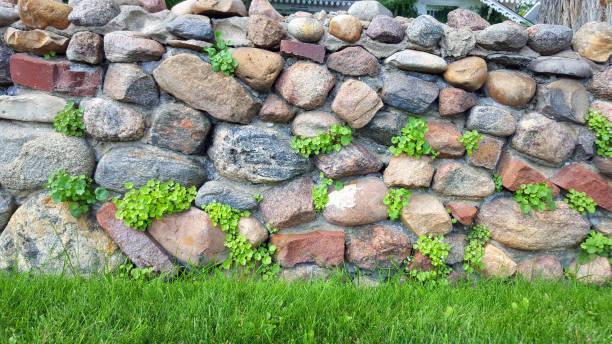 vintage garden steinmauer vom anfang des 20. jahrhunderts - steine für gartenmauer stock-fotos und bilder