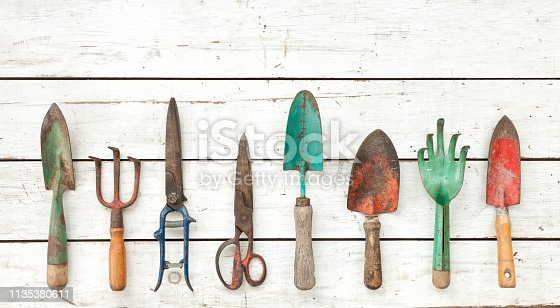 Vintage garden tools collection on a rustic white wooden background