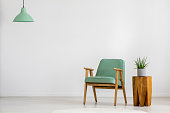 Aloe on wooden stool next to vintage green armchair against white wall with copy space in empty room