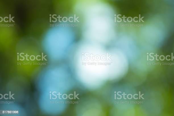 Photo of Vintage green blurred bokeh. Defocused background.