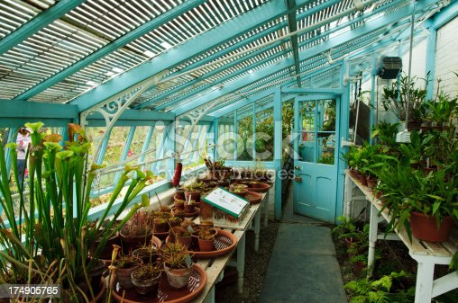interior of an old English greenhouse