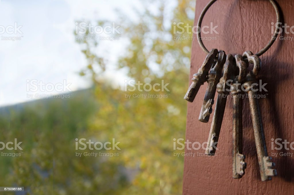 Vintage Keys in the Fall stock photo