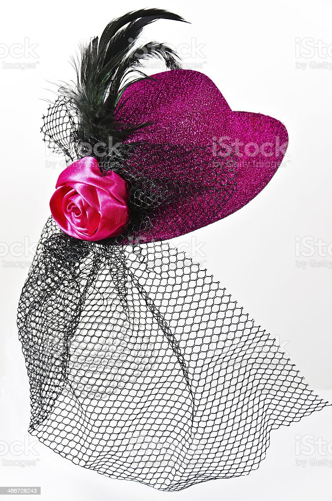 Vintage  lady's hat with a black veil isolated stock photo