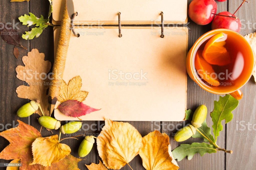 Vintage notebook with pen, hot tea with lemon and autumn decoration stock photo