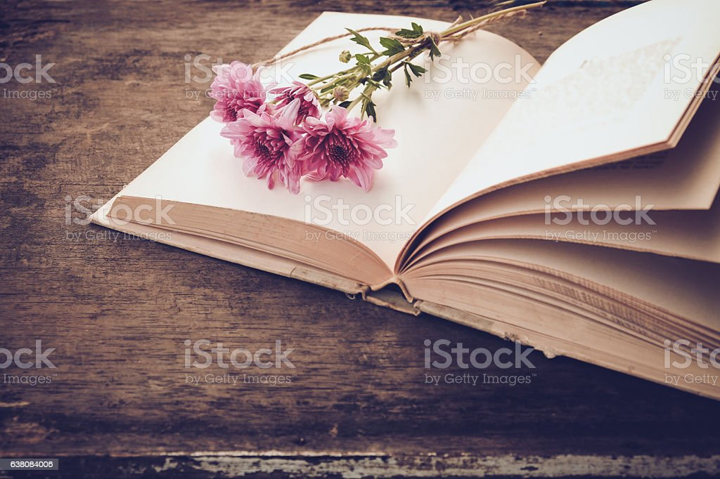 Vintage novel books stock photo