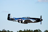 Birmingham AL USA - October 13, 2018 : P-51 Mustang WWII fighter aircraft flying at a public  event. In the picture the propeller airplane flying low from the ground. Even the tree line also visible in the picture. The vintage airplane perform at various public events for years now.