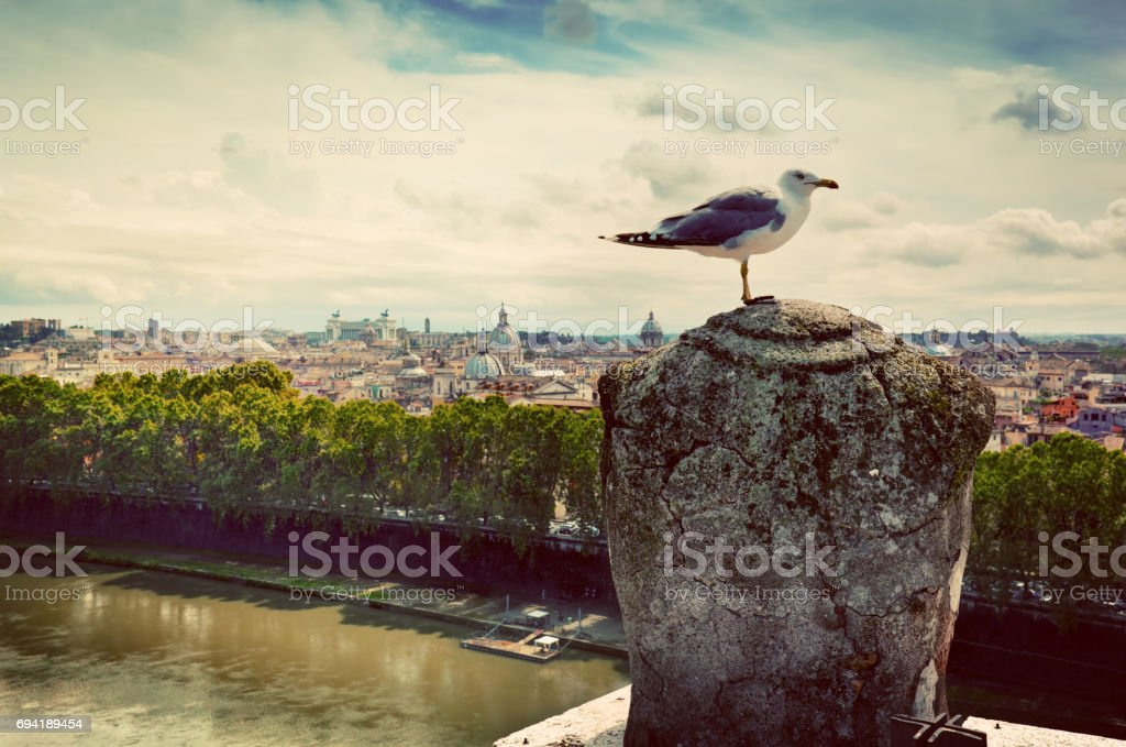 Vintage panorama of Rome, Italy. As seen from Castel Sant'Angelo. stock photo