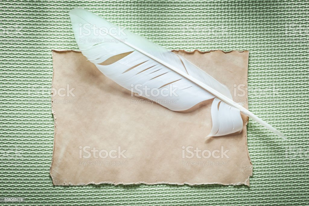 Vintage paper sheet plume on green background top view royalty-free stock photo