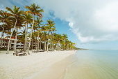 istock Vintage photo of Palmtree and tropical beach 1322673306