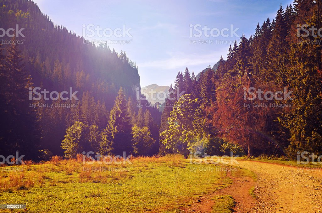 vintage photo of tatra mountains landscape stock photo