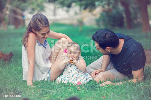 Vintage photograph of a happy family posing in a park in summer time.