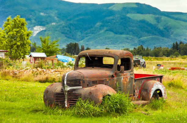 Vintage Pickup in a Meadow in Washington USA stock photo
