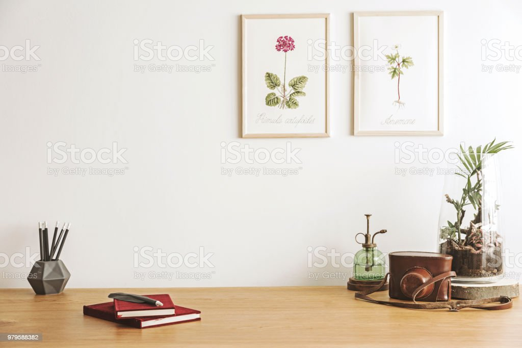 Vintage posters illustratie van planten kantoor aan huis interieur