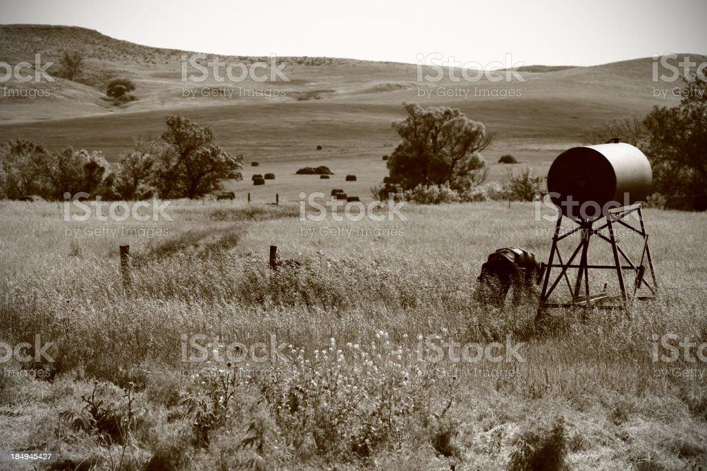 Vintage Range Landscape royalty-free stock photo