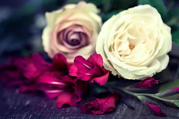 Vintage retro flowers picture id181057802?b=1&k=6&m=181057802&s=612x612&w=0&h=xuyi8yebqqv2gb wrjkvg9x5ow0ksc 0xaonn8omsug=