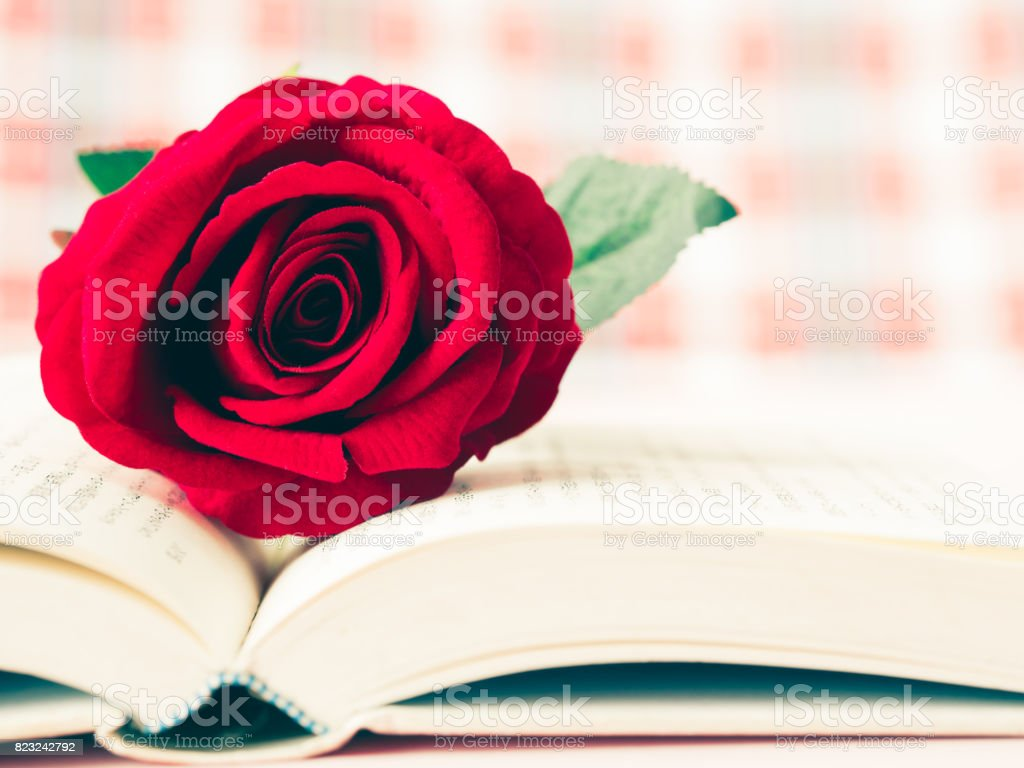 Vintage retro of red rose on open book. LOVE and valentine's day concept. stock photo