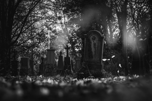 Vintage, retro photo of tombstones in the Old Southern Cemetery (Alter Südfriedhof) of Munich. Grainy, noisy, artistic monochrome image. Halloween, all saints concept