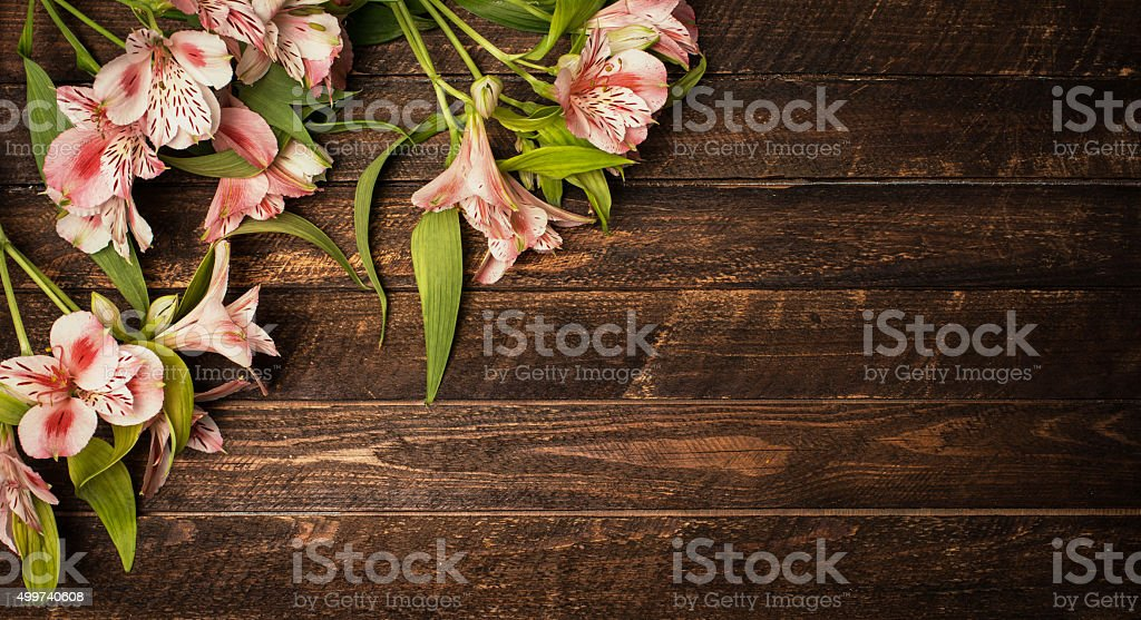 Vintage retro styled background with Beautiful Alstroemeria flowers on wood. stock photo