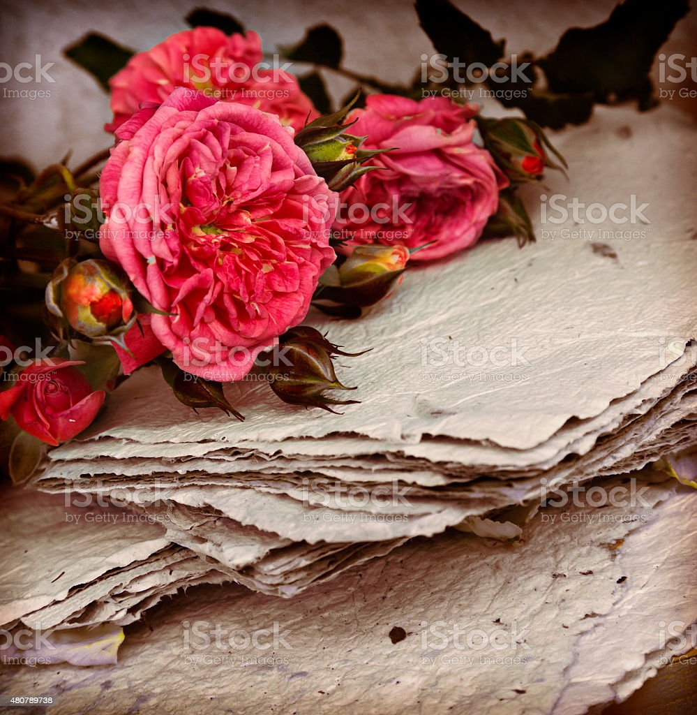 Vintage romantic background with beautiful white roses, petals a stock photo