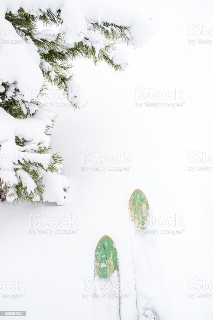 Vintage skis in the snow stock photo