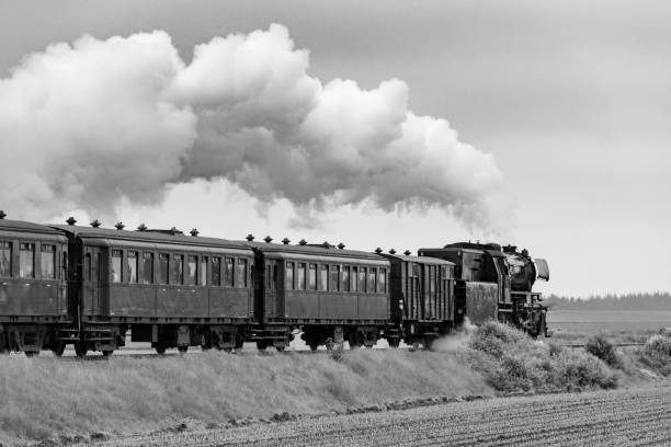 Vintage steam train pulling railway cars in a rural landscape stock photo