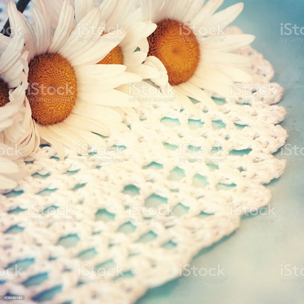Vintage Style Fresh Daisy Flowers Spring Flowers Stock Photo More