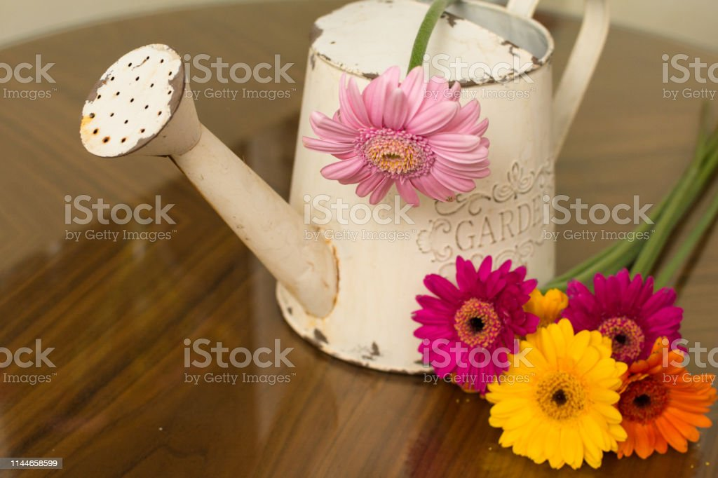 Floral arrangement of bright colored flowers for gardening background