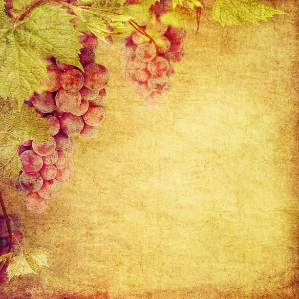 vintage stilisierte vine garland, hintergrund für ihren text. - geburtstagswünsche mit bild stock-fotos und bilder