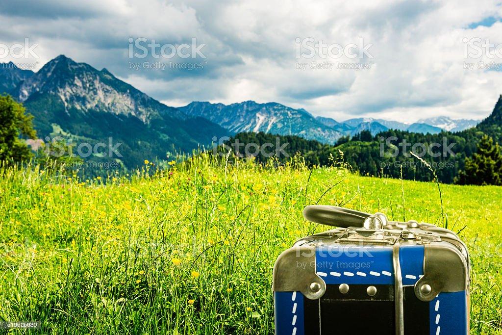 vintage suitcase in mountainous area stock photo