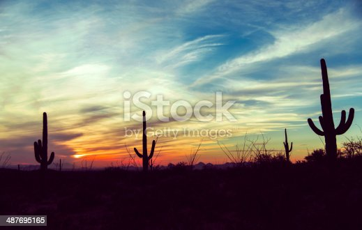 America / USA / Cactus / Wild West / New Mexico / Las Vegas / Sunset / Sky Background Desert sunset