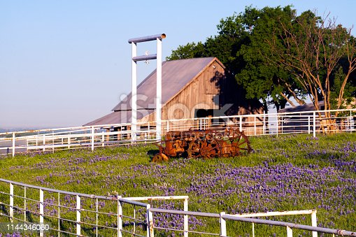 Vintage tractor, bluebonnets and a rustic barn.