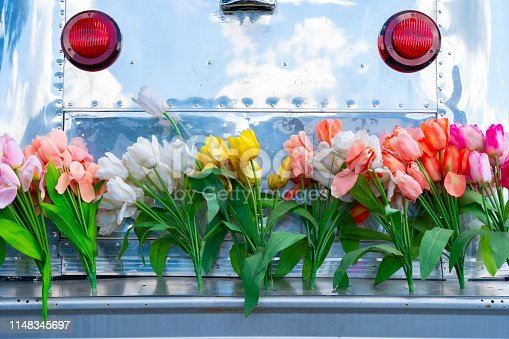 Vintage travel trailer camper with aluminum siding and a tail gate bumper covered in tulip flowers, depicting the hippie era or a fun lifestyle.