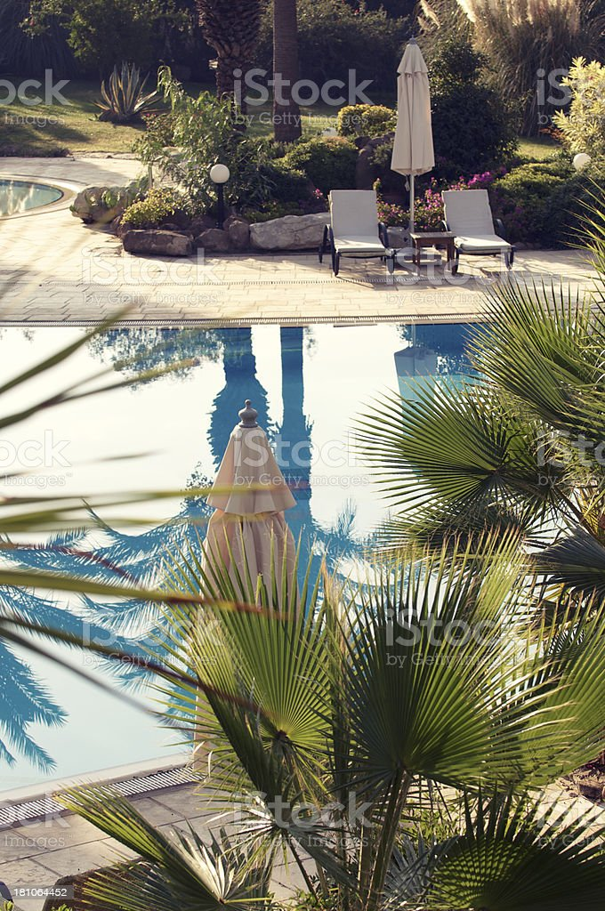 Vintage Tropical Resort Swimming Pool with Palm Fronds royalty-free stock photo