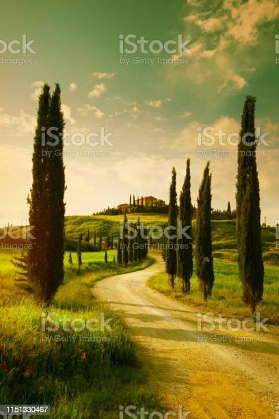 Vintage tuscany countryside landscape picture id1151330467?b=1&k=6&m=1151330467&s=612x612&h=y mpc2eie2vbtynwrebw7dw duubknceocdaiovzl8o=