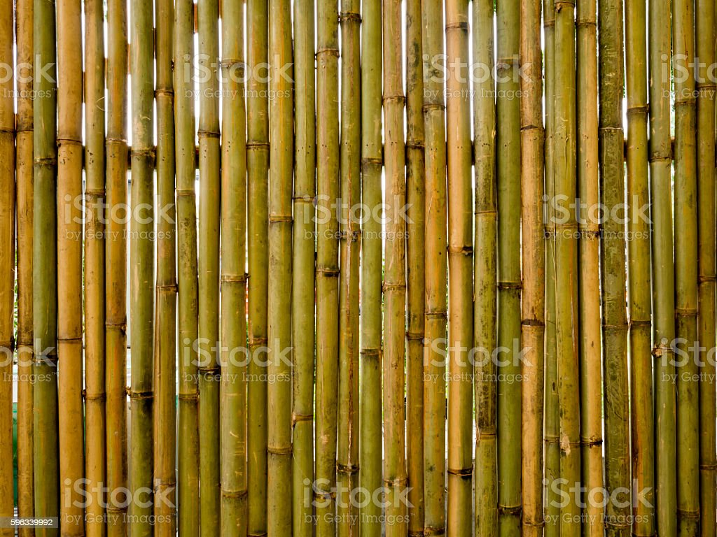 Vintage vertical brown and green bamboo fence texture background. Lizenzfreies stock-foto