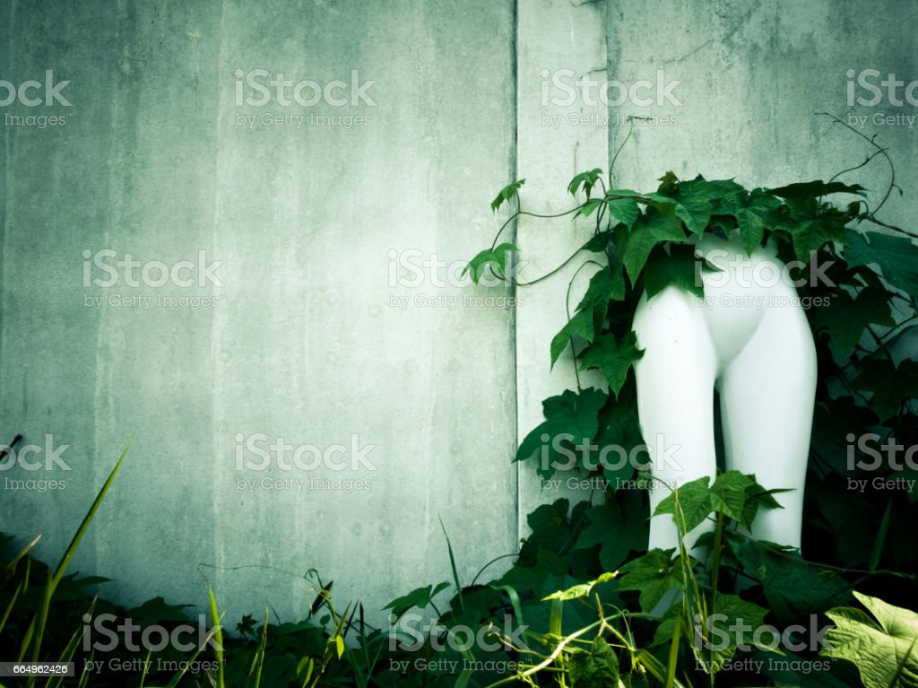 Vintage wall  building with light and vine with Puppetry stock photo