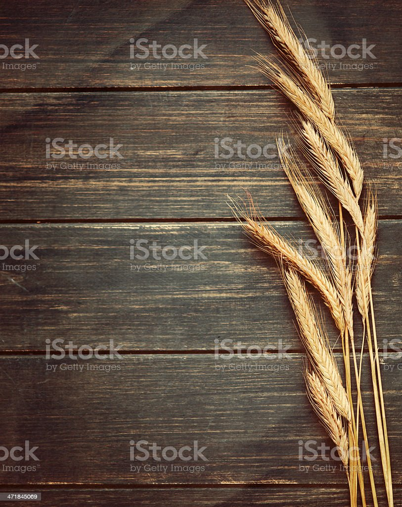 Vintage wheat background stock photo