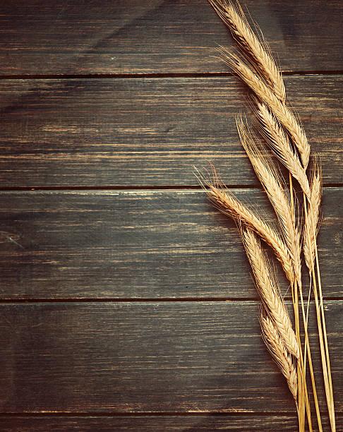 Vintage Weizen Hintergrund – Foto