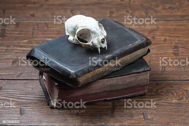 Vintage witchcraft still life picture id607606302?b=1&k=6&m=607606302&s=612x612&h=xwope706mmmlhzrcmttzuq 6rt9kvj10vraubbispwq=