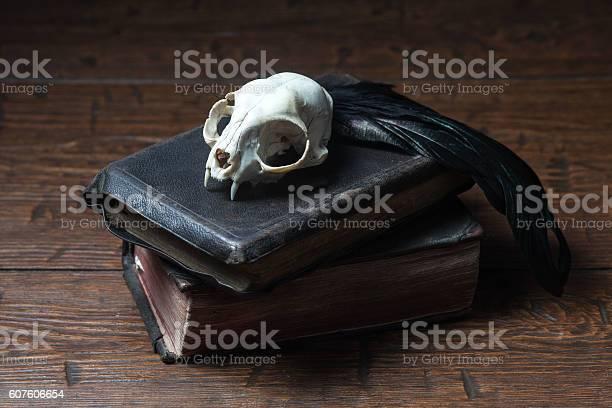Vintage witchcraft still life picture id607606654?b=1&k=6&m=607606654&s=612x612&h=blh04cqoplfowgjpmzvy9lynb5pd2rziuog21wuzc 8=