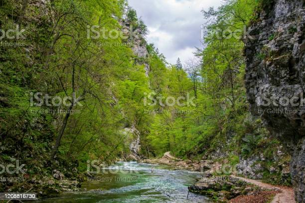 Photo of Vintgar gorge, beauty of nature, with river Radovna flowing through it, Triglav National park, Slovenia