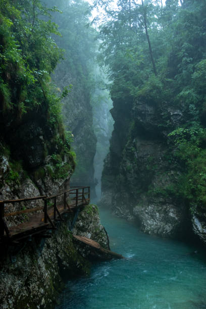 Vintgar Gorge in the pouring rain stock photo