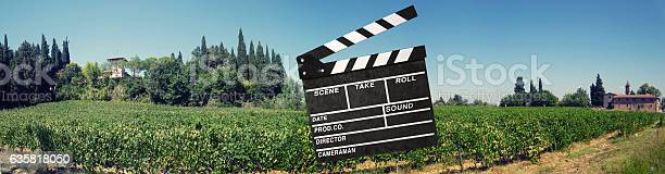 Vinyard In Der Toskana Stockfoto und mehr Bilder von Agrarbetrieb