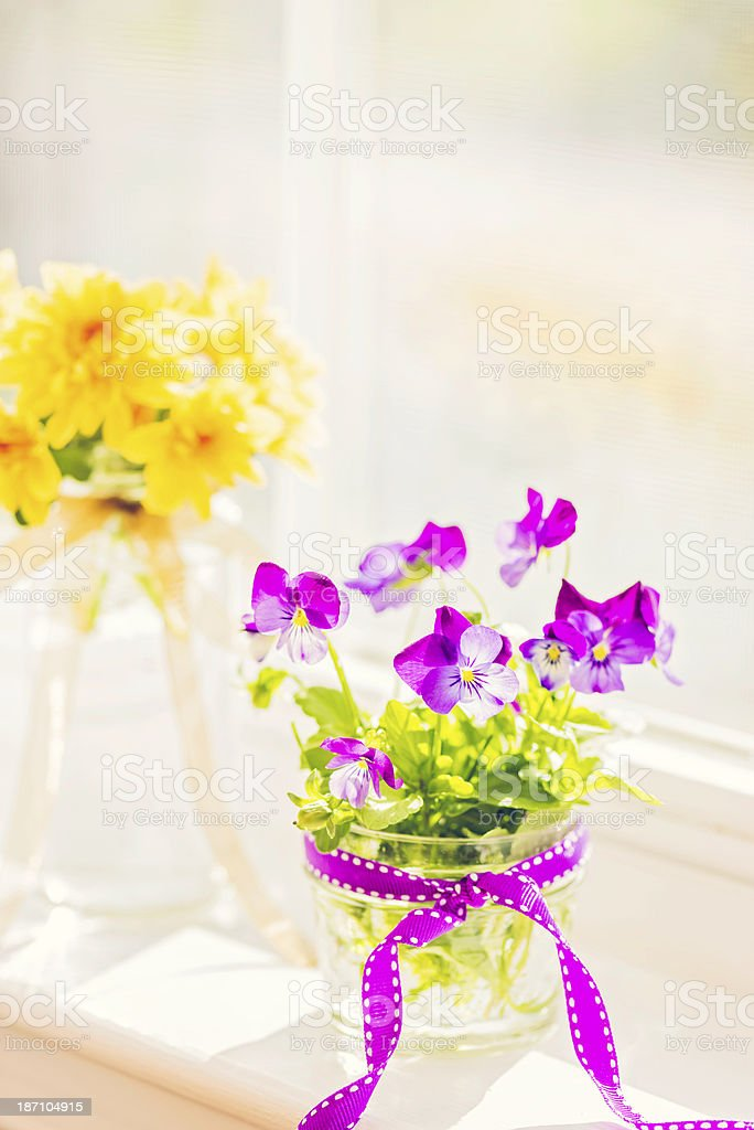 Viola and Chrysanthemum Bouquets in Window royalty-free stock photo