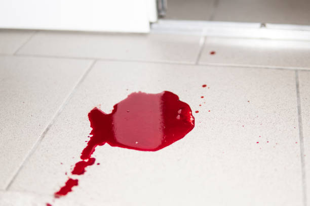 A violence conceptual background which shows blood drops and splash is scary and dirty. A puddle of dried blood on the tiled bathroom floor. stock photo