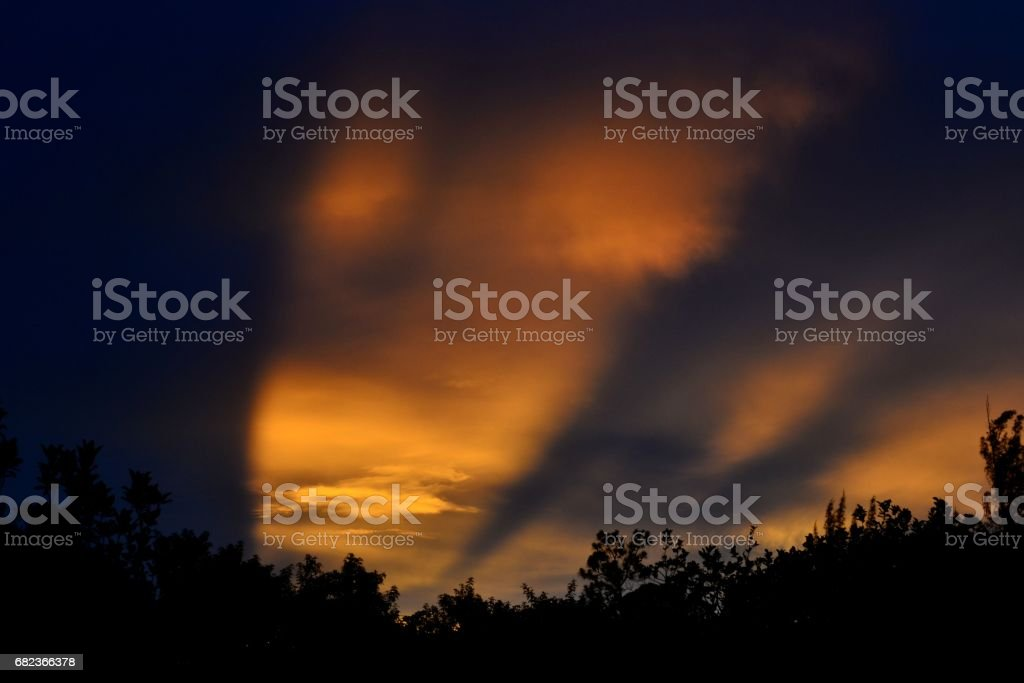 violet an gold sky foto stock royalty-free