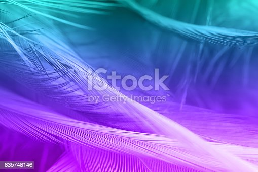 istock Violet and green color trends chicken feather texture background 635748146