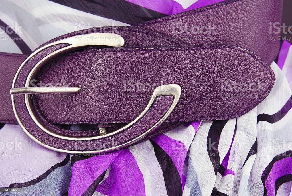 violet aubergine leather belt royalty-free stock photo