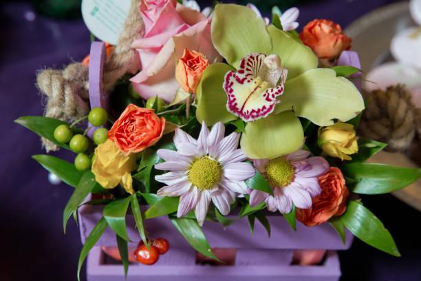 Violet branch orchid flowers orchidaceae phalaenopsis known as the picture id1068710096?b=1&k=6&m=1068710096&s=612x612&w=0&h=8q8thxleoatnnqs4emtnpnekj4p0a7binrgllaqqwqg=