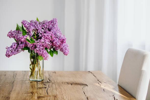 violett gefärbt lila zweige in einer transparenten glasvase auf rustikalen holztisch. weißer hintergrund, textfreiraum. - küche lila stock-fotos und bilder